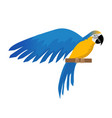 parrot ara ararauna flat icon cartoon style blue vector image