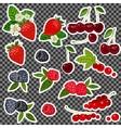 Strawberry Blueberry Cherry Raspberry Red vector image