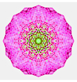 Geometric mandala Mosaic vector image vector image