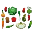 Healthy organic fresh vegetables on white vector image