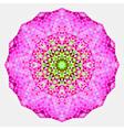 Geometric mandala Mosaic vector image