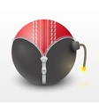 Cricket leather ball inside a burning bomb vector image vector image