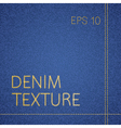 jeans texture vector image vector image