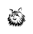 Norwegian forest cat vector image