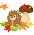 hedgehog and Fall vector image