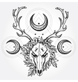 Deer scull with branches and ornate moons vector image