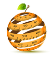 Apple and measuring tape vector image vector image