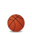 realistic illustration of basket ball vector image