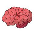 brain idea human organ vector image
