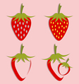 set of strawberry icon vector image