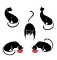 big set of the black cats vector image