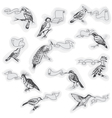 Hand drawn Birds with Signs vector image