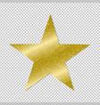 golden star on transparent background vector image