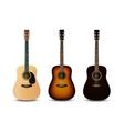 Realistic acoustic guitars set vector image vector image