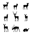 silhouette deer on white background vector image vector image