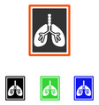 lungs x-ray photo flat icon vector image