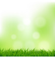 grass and bokeh vector image