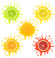 citrus fruit in splashes of juice vector image