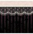 Polka dot fringe lace on black background vector image
