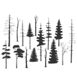 set of the pine tree vector image