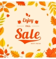Colorful autumn leaves and sale text vector
