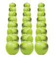 Green apples in row vector image vector image