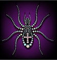 Brilliant spider vector image