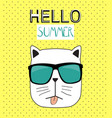 hello summer background with funny hand drawn cat vector image