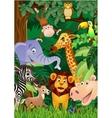 animal cartoon vector image vector image