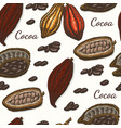 pattern with cocoa vector image