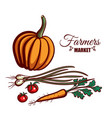 farmers market pumpkin vegetables vector image