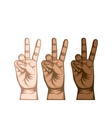 hand peace and love symbol vector image