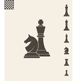 Chess pieces Icon set vector image
