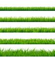 grass big set vector image