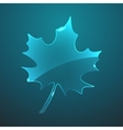 glass maple leaf icon Eps10 vector image