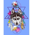 with husky vector image