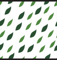 green leaves seamless pattern on a white vector image