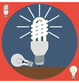 Electric light bulbs vector image