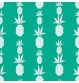 White pineapple pattern vector image