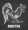 rooster or cock bird hand drawn sketch on vector image