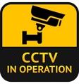 cctv symbol label security camera vector image vector image