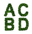 alphabet abcd vector image
