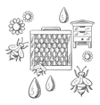 Beekeeping and apiary sketched objects vector image