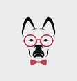 dog wearing glasses on white background animal vector image