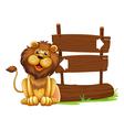 Cartoon Lion Signboard vector image