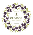 label for olive oil wreath of black olives vector image
