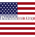 Bright Presidents Day background with american vector image