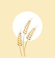 golden spikelet and sun vector image