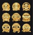 retro golden badge collection vector image
