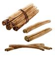 Watercolor spice cinnamon stick vector image